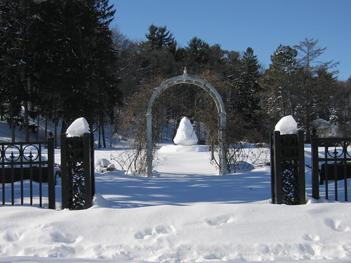park blue trees winter shadow urban white snow newyork color weather landscape gate pretty day centralpark archway s70 schenectady canonites