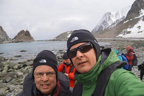 234 Samen op Elephant Island - Point Lookout Kinbandpinguin