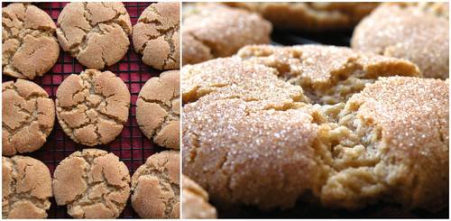 Mrs. Fields Secrets Brown Butter Snickerdoodles