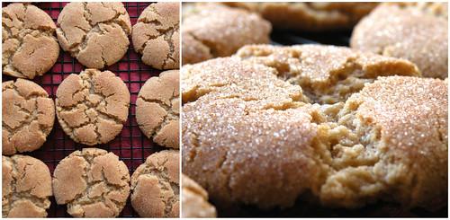 Mrs. Fields Secrets Brown Butter Snickerdoodles
