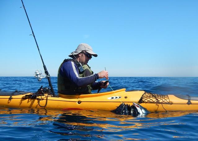 Pesca de verdel desde el kayak.