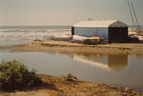 Temporal 1987