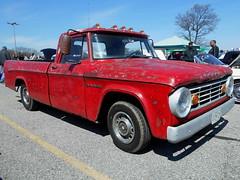 1967 Dodge D-100