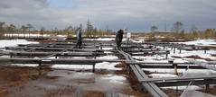 examining OTC site for problems after snow melt