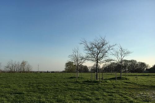 Winter Spring Hooglede 002.jpg