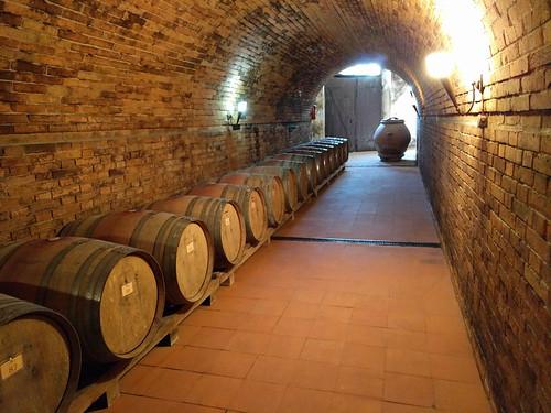 wine barrels @ Castello di Monterinaldi