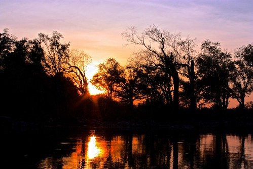 Mekong sunset through the trees