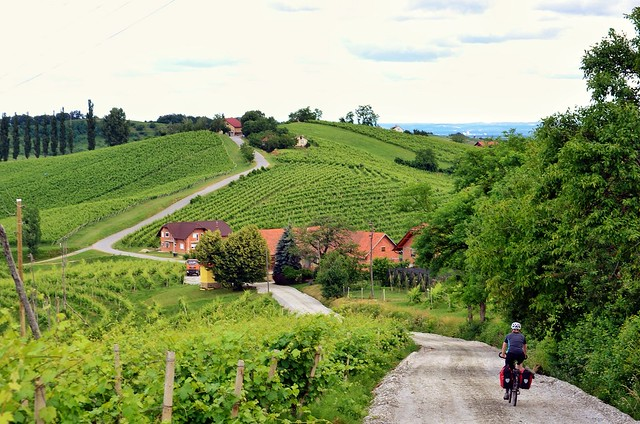 Jerusalem, Slovenia - close to Maribor with great wine and accommodations - the almost perfect bicycle travel destination; Two Wheel Travel