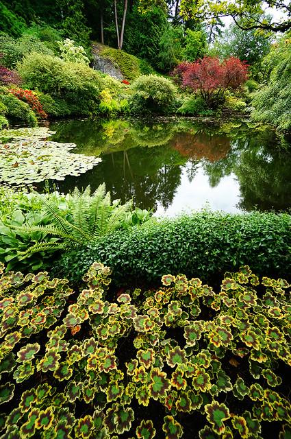 Butchart gardens flickr photo sharing for Victoria s secret victoria gardens