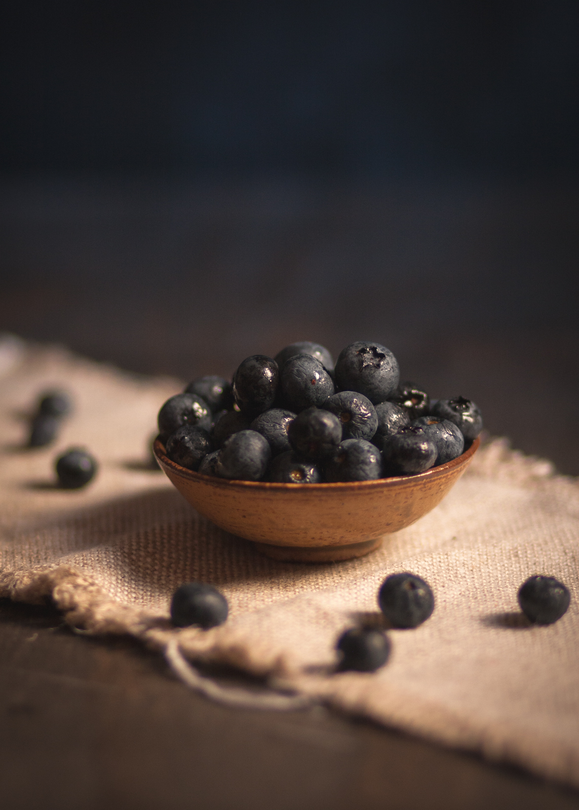 Blueberry Still Life