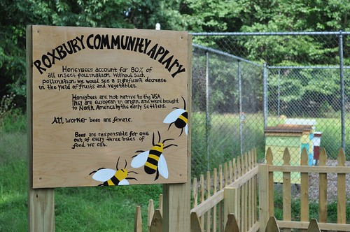 garden newjersey community education action environmental bee honeybee outreach beekeeping roxbury apiary beekeeper