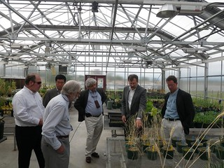 Montana State University greenhouse