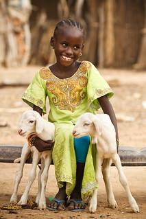 A little girl hugs two goats