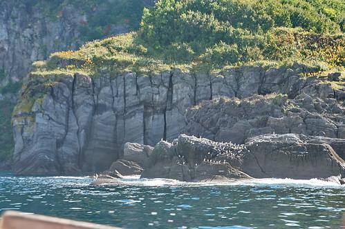 【写真】2013 : 知床半島遊覧船-往路2/2020-09-01/PICT2265