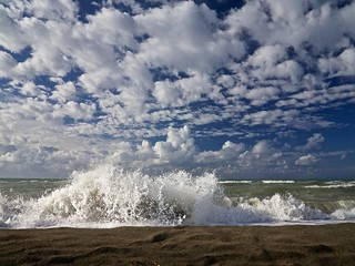 Image of La vecchia Pineta. sea sky italy cloud green beach water clouds wave ostia lazio