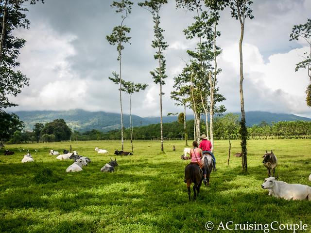 La Fortuna Horseback Riding Arenal Volcano Costa Rica