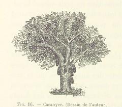 """British Library digitised image from page 78 of """"Carnet d'un voyageur. Au pays des Veddas, Ceylan ... Avec 116 figures d'après les croquis et photographies de l'auteur et une carte"""""""
