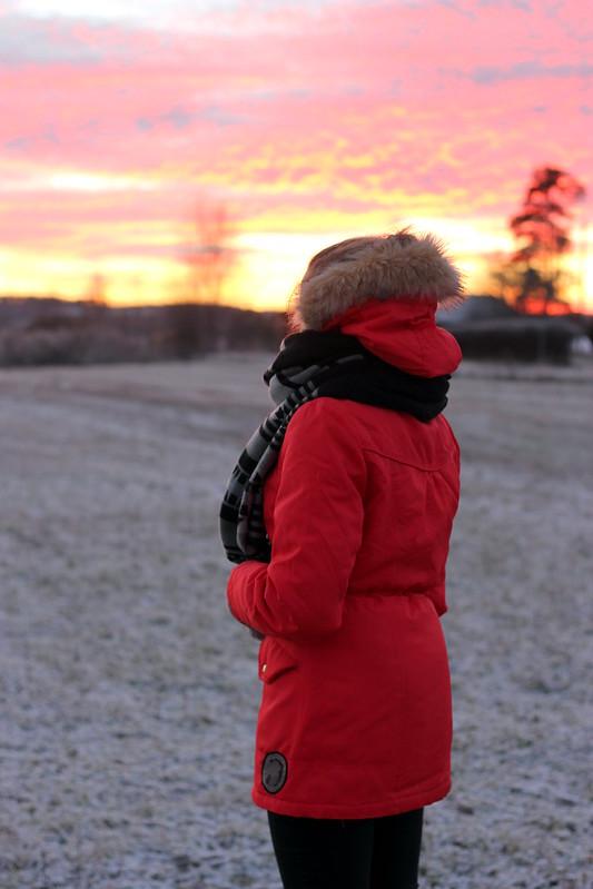talvi tulee 2013 141