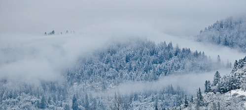 trees winter snow mountains color weather fog clouds nikon hills d90