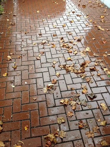 Image of a permeable pavement