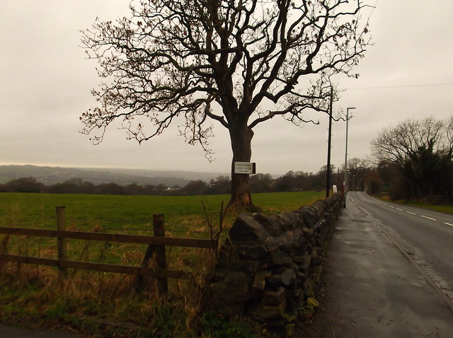 Horsforth and Rawdon circular 007