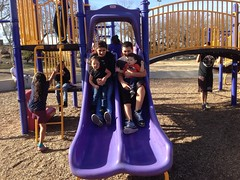 A day at the park
