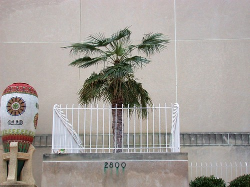 Scottish Rite Temple palms