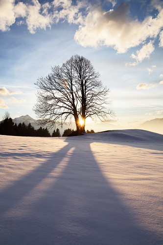 winter sunset shadow cloud sun snow mountains tree nature zeiss ze distagont2821