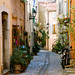 Small photo of Biot