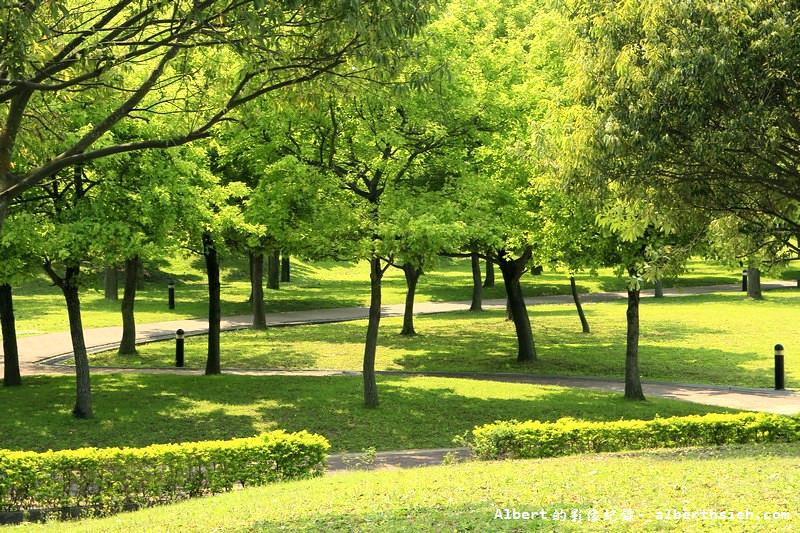 桃園大溪放鬆景點