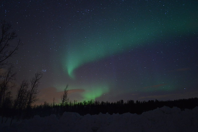 Northern Lights (Aurora Borealis), Rossfjordsvatnet, Langnes, Northern Norway, Arctic Circle