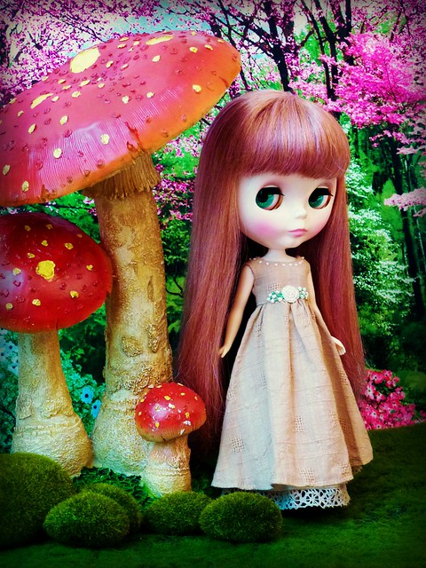 Giant Mushrooms!