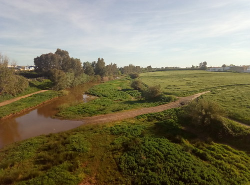 El río Viar. Cantillana (Sevilla).