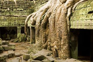 Angkor_0073