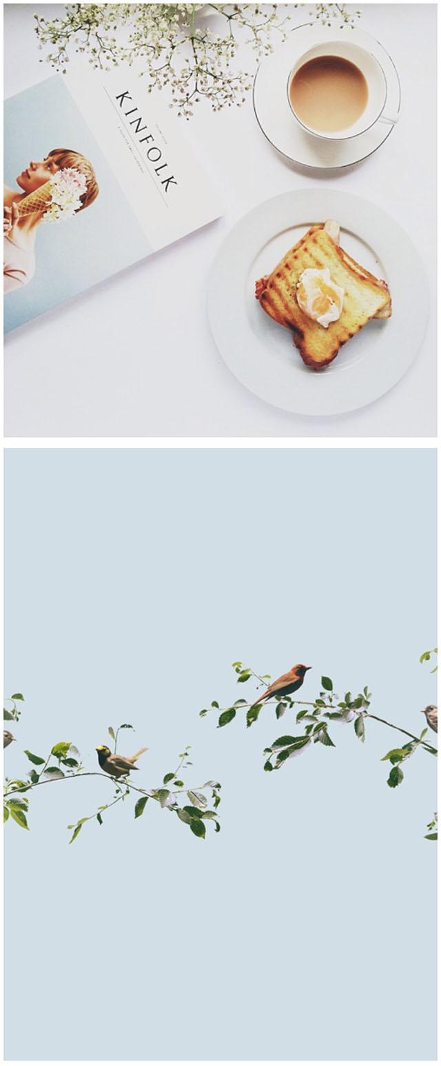 soft blues-birds