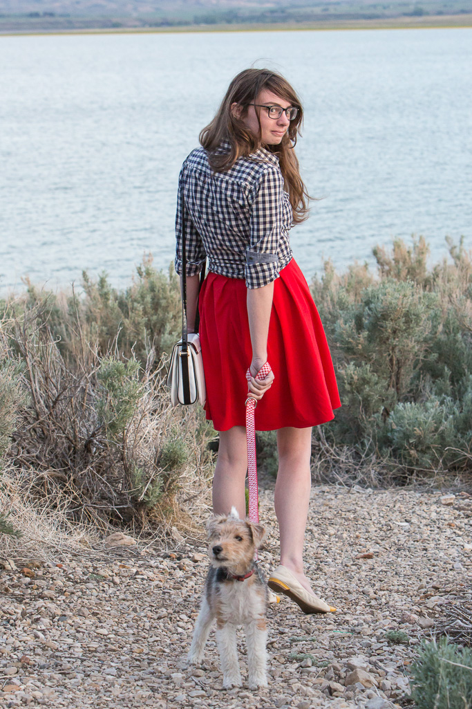 fox terrier, walking the dog, red dress, gingham top, blue top, never fully dressed, without a  style,