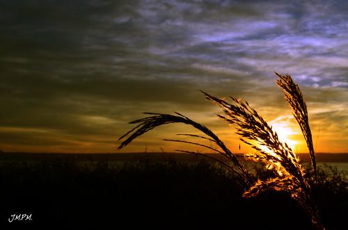 lake sunrise landscape golden hour paraguay aregua