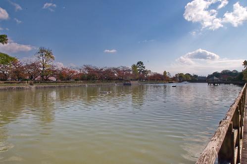 【写真】2012 紅葉 : 長岡天満宮/2020-10-09/IMGP6558