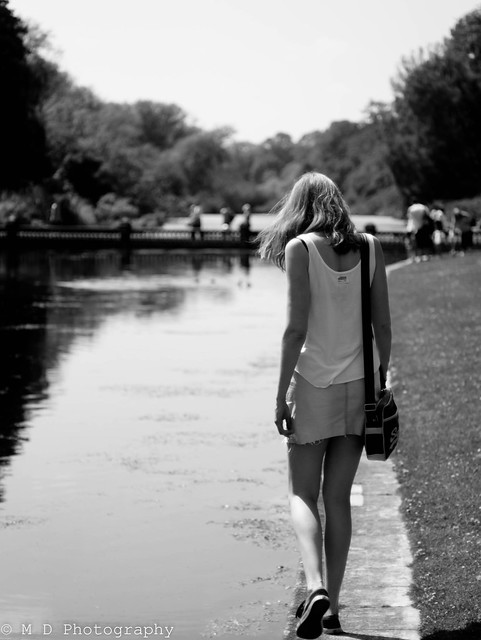 Take A Walk Around The Lake