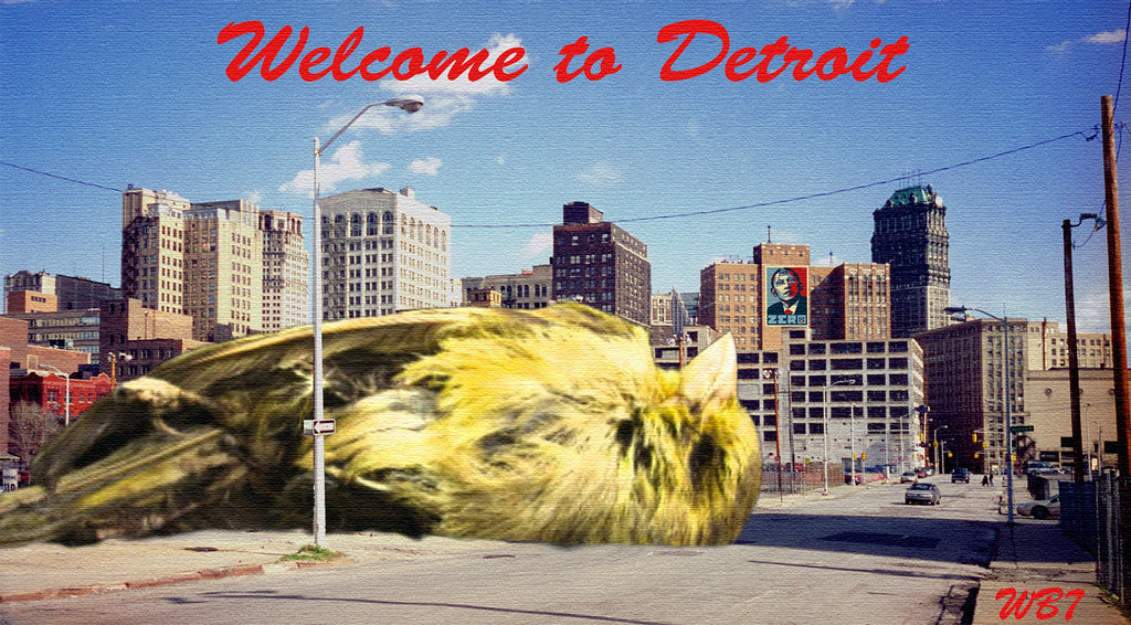 CANARY IN DETROIT