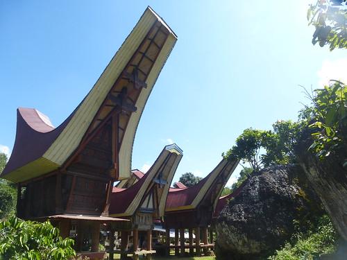 Sulawesi13-Lo'ko Mata-Tikala (9)