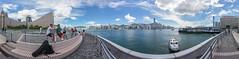 香港尖沙咀海濱長廊維多利亞港全景 Victoria Harbour Panorama from Tsim Sha Tsui Promenade, Hong Kong / SML.20130808.6D.25746-SML.20130808.6D.25757-Pano.i12.360x95