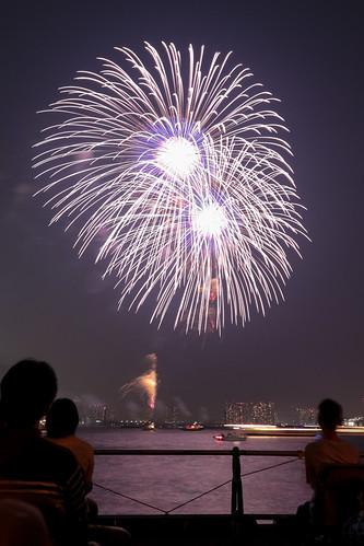 「昇分火 銀彩の花」 by 菅野忠夫 東京湾大華火 2013 Tokyo Bay Grand Fireworks