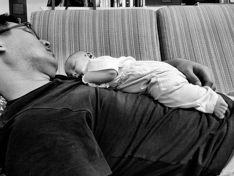 這樣看才知道好像真的很好睡