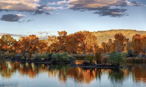 autumn newmexico reflection fall landscape albuquerque bosque rockymountains sandia
