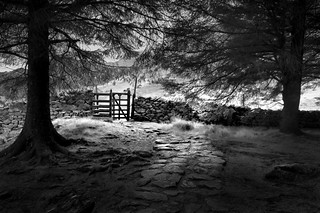 PATH TO FELL FOOT -  LANGDALE