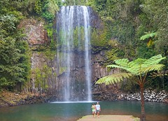 Millaa Millaa Falls, Atherton Tableland, Queendland_img 0191