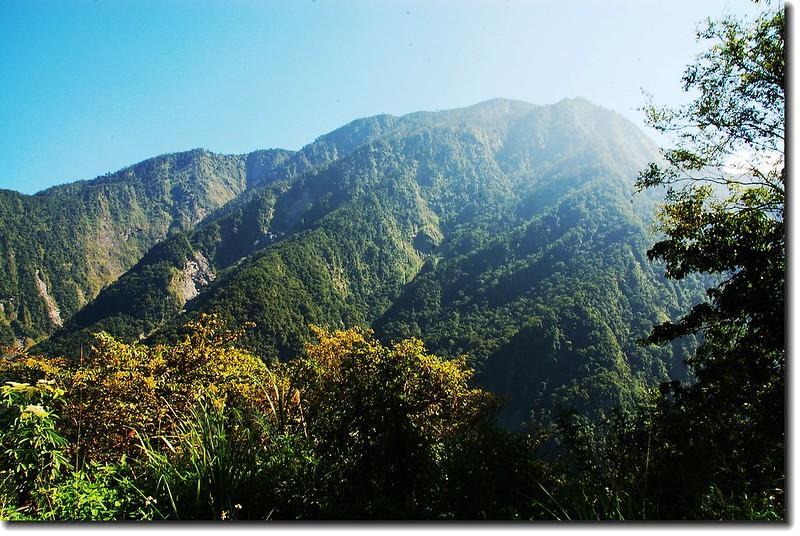 萬榮林道北望西鳳林山