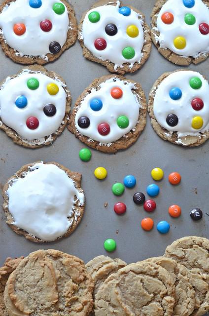 m&m zebra cookies #shop