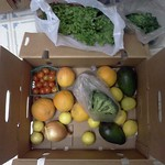 01/02: Our first CSA Box!